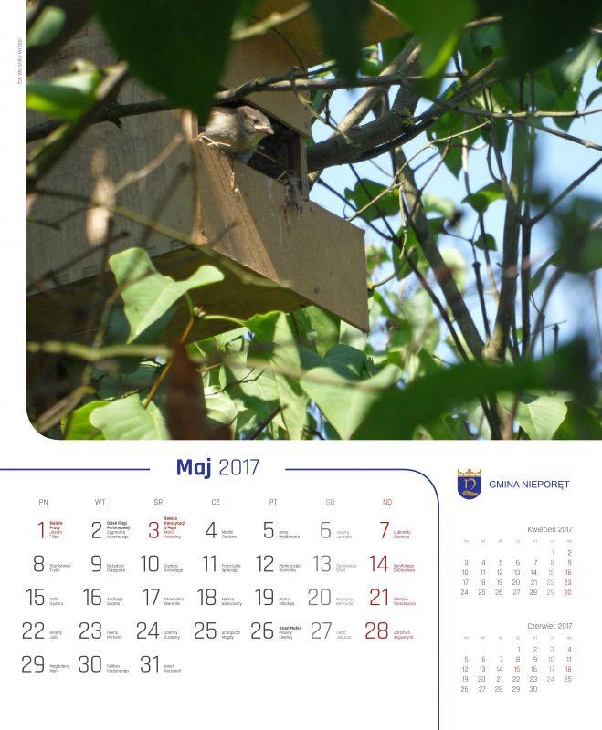 kalendarz 2016_1_05