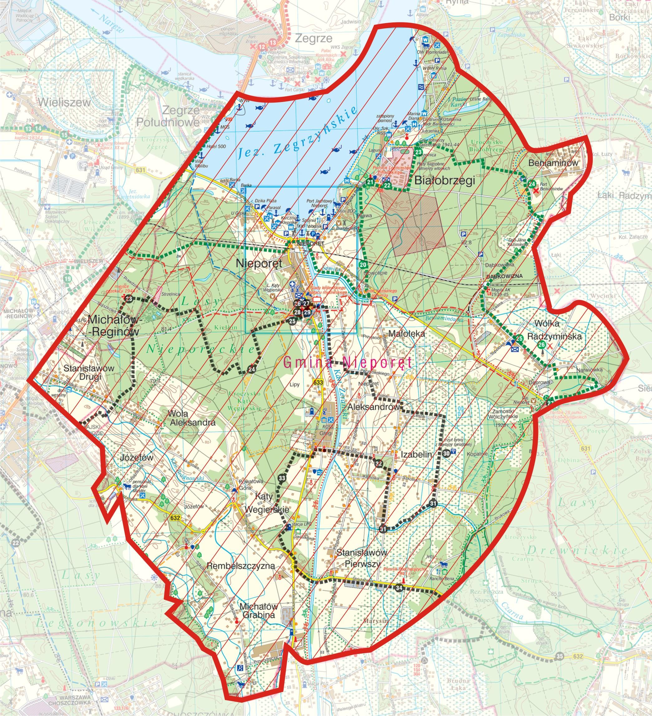 wscieklizna_mapa