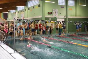 Galeria zdjęć: Mikołajkowe Zawody Pływackie o Puchar Wójta Gminy Nieporęt